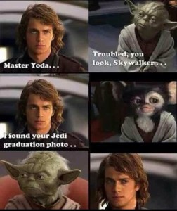 Matt - Yoda2