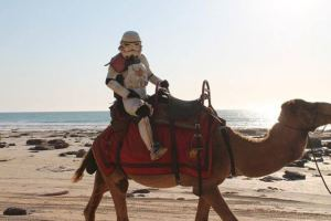 Imperial camel